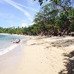 Riu bachata beach