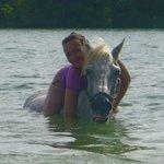 horseback swim
