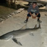 ShArk caught right off the dock
