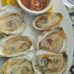 Either Katama Bay Or Osterville Oysters