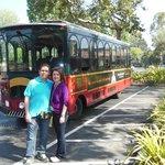 Transporte a Universal Studios