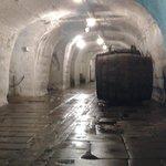 Cellar w/ barrels of beer