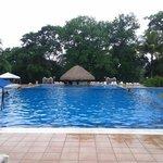 El área de piscinas