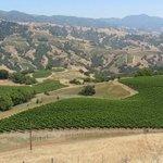 Foto de Stonestreet Winery