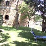 Area near the pool