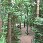 One of the zip wires