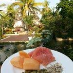 view sarapan pagi