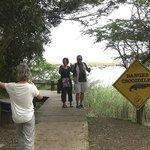 Saint Lucia Estuary (04)
