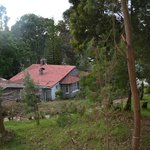 View of main Bungalow
