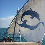 Sail up for the ride home