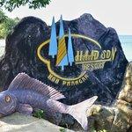 haad son