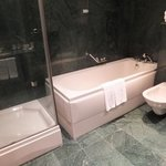 Bathtub and separate shower stall