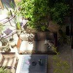 上階から中庭を望む
