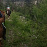 horseback riding in the mountains