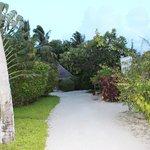 Roads in the island