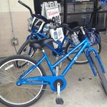 Bike rental at Parrot Key