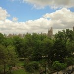 View from room of Central Park