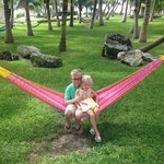 Awesome hammocks!