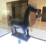 cavallo al museo