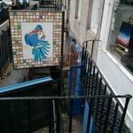 Blue Parrot Cantina照片
