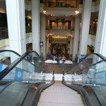 Escalator cascade
