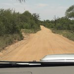 Kruger - Orpen Gate => Satara Camp