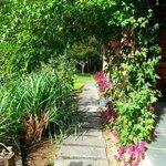 Corredor que separa os quartos do Jardim  / Horta