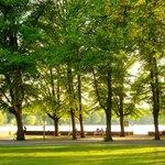 Masch Park
