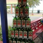 Jager Tree leftover from the Chrismas Holidays