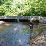 Creek/Bridge