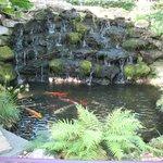 Hotel fish pond