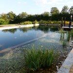 This stunning natural pool