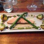 Salmon a l'uni