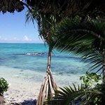 Luxury Hotels in Samoa with Virgin Cove Resort