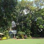 Exuberantes jardines