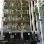 vista interior hotel