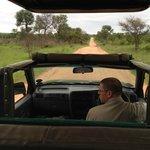 Typical view on safari, keep your eyes peeled!