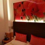 Zimmer Mohnblume