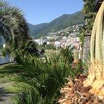 Herrliche mediterrane Vegitation ums Hotel, unmittelbar bei der Promenade.