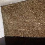 Fingernails in carpet