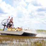 Taking an airboat ride in the Everglades.