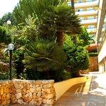 Hotelgarten