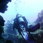 "Diving through dive site ""Calvin's Crack"""