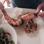 MASSIVE prawns!!!!!