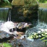 Lovely waterfalls!