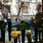 Le Vendome Bar Foto