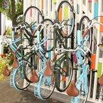 Free Rental Bikes at Hotel Zed
