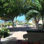 Tulip Restaurant, Eagle Beach