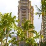 THe Grand Waikikian
