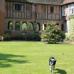The view of the hall from the studio front door. That's Monty coming across the lawn.